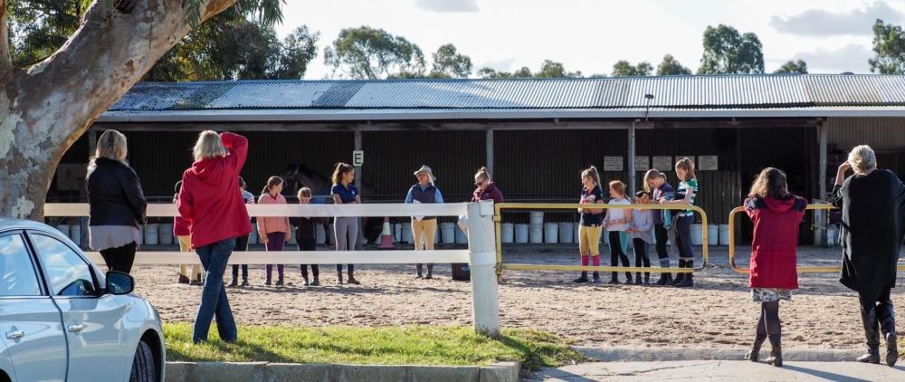 Camps | Brockman's Riding School